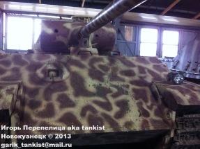 Kubinka panther
