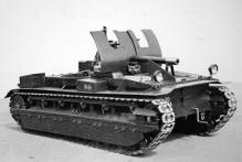 birch-5