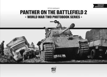 panther-on-the-battlefield-2-480x346